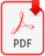 Icon PDF-Document